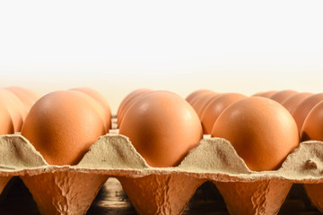 Raw eggs are arranged neatly in trays fabricated from recycled paper.