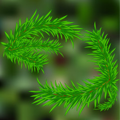 a sprig of pine needles . on a green background