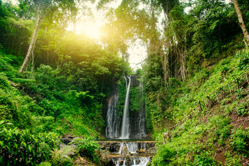 Beautiful waterfall in green forest. Nature landscape background