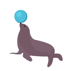 Sea lion with a ball, circus icon flat style, isolated on white background. Vector illustration
