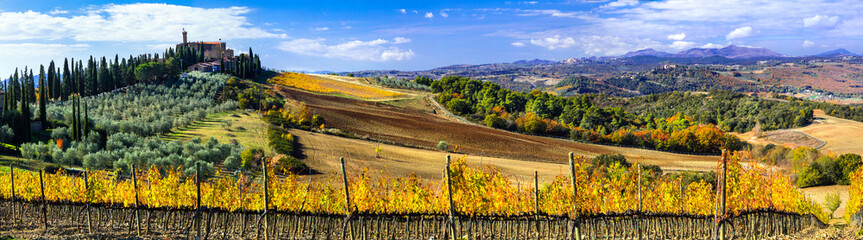 Foto op Canvas Toscane Traditional countryside and landscapes of beautiful Tuscany. Castles and vineyards. Italy