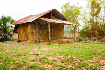 Old barn of grass hay in storage