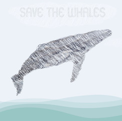 whale  background pattern. whale illustration. humpback whale