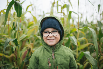 Little boy in glasses in the cornfield smiling