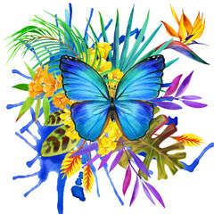 hand-drawn watercolor illustration of Tropical butterfly with flowers and leaves background