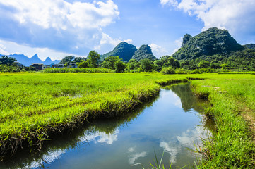 The beautiful countryside scenery in summer