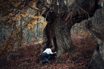 """Interpretación del cuento """"Alicia en el país de las maravillas"""" en la actualidad. Mujer joven adentrándose en el hueco de un castaño centenario en medio del bosque."""