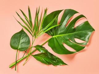Wall Mural - green tropical leaves