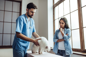 Doctor veterinarian at clinic