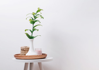 Green plant in the vase, candle and straw box on the small table at the white wall