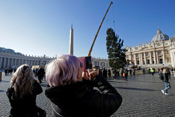 Faithfuls take pictures as the Vatican Christmas tree coming from Poland is lifted by a crane in Saint Peter's square at the Vatican