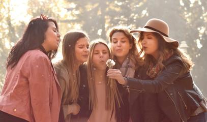 Five happy woman friends Blowing a dandelion