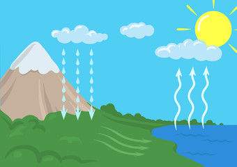 Vector schematic representation of the water cycle in nature, hydrological cycle. Infographics Illustration.