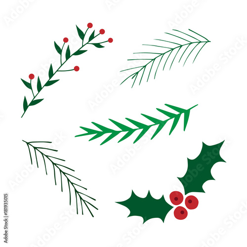 Christmas Branch Vector.Hand Drawn Christmas Set Mistletoe And Leavy Branches