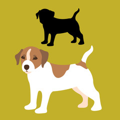 russell dog puppy flat style vector illustration profile