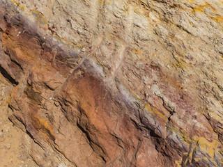 Close-up of rock in desert, Negev Desert, Israel