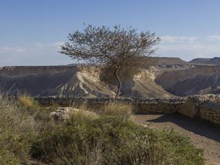 View of Ben Gurion burial site, Ben Gurion Memorial, Sde Boker, Israel