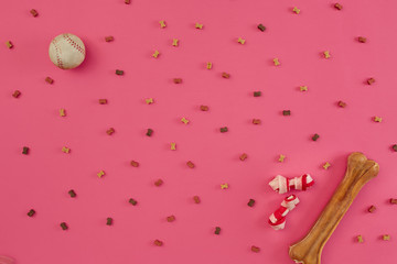 Dry dog food and accessories on pink background