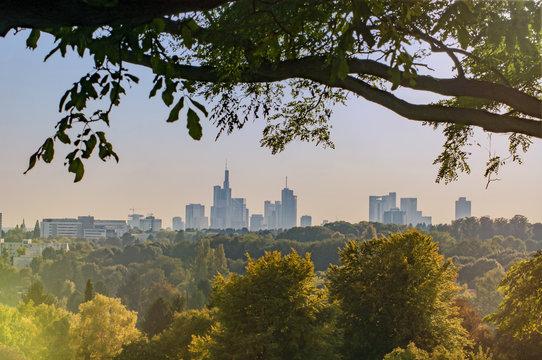 Skyline von Frankfurt am Main hinter ländlicher Szene mit Büschen und Bäumen