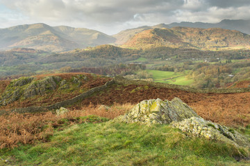 Loughrigg Fell Landscape Lake District