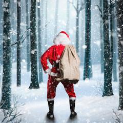 Santa Claus steht vor verschneitem Wald