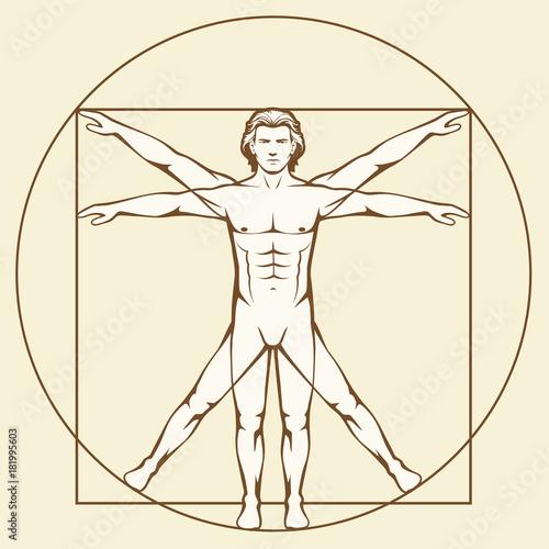 Leonardo Da Vinci Vetruvian Man Human Anatomy Stock Image And
