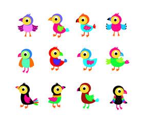 cute bird vector collection
