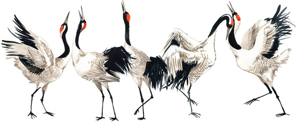 Japanese crane bird seamless pattern, watercolor illustration.