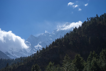 Peak and Forest in the Himalaya mountains, Annapurna region, Nepal