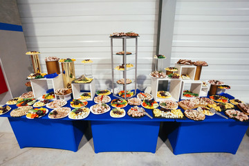 Dishes with snacks made of meat served on a blue table