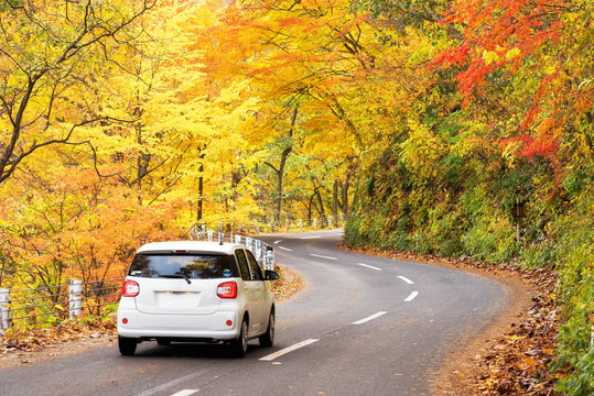 Scene of cars drive along the road with autumn red leaf in Aomori, Japan. Beautiful country side along the road great time for travel.