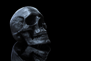skull wallpaper hd of a skull isolated in black background with reflection 3d illustration
