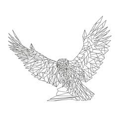 Sitting eagle on a stone