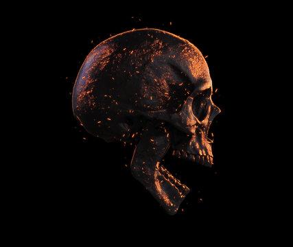 burned skull side view wallpaper 3d illustration