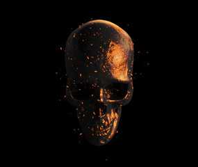 burned skull  wallpaper 3d illustration