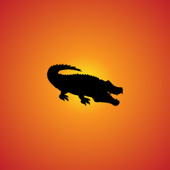 crocodile icon. isolated sign