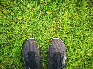 run shoes on green grass lawn background