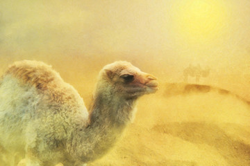 close  up on young camel on the desert, sand storm, digital painting