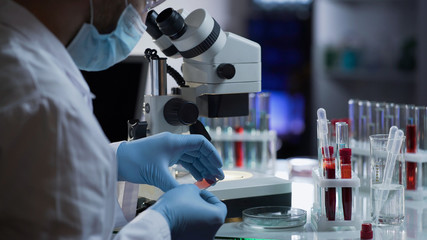 Medical worker making blood test for detection of antibodies and infections