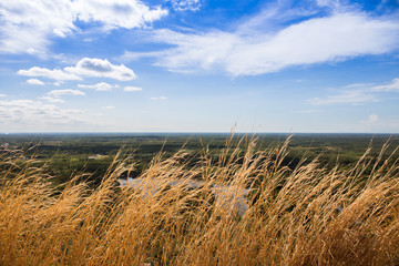 dry grass on forground with green land and blue sky in day, countryside