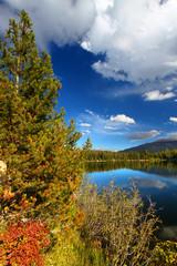 Wall Mural - Bear Lake Colorado Rockies