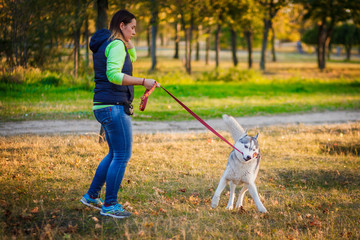 Young girl play with Siberian husky