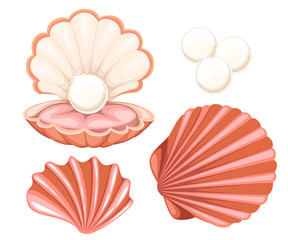 Pink seashell with pearl. Vector illustration isolated on white background.