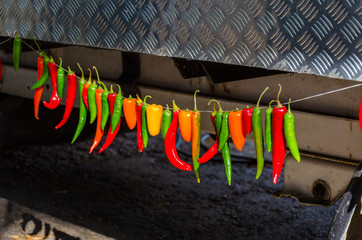 Colorful chili peppers hanging on a rope.