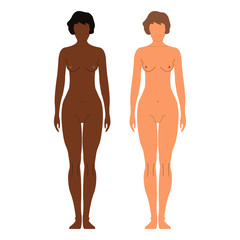 African and European Women. Human front side Silhouette. Isolated on White Background. Vector illustration