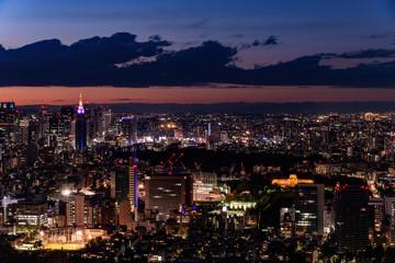 東京・新宿方面の夜景