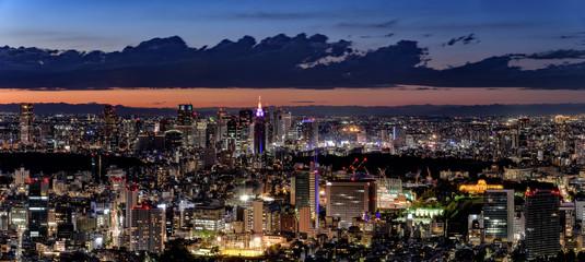 東京・新宿方面の夜景 大パノラマ
