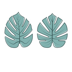 Tropical Leaves Collection. Vector illustration.