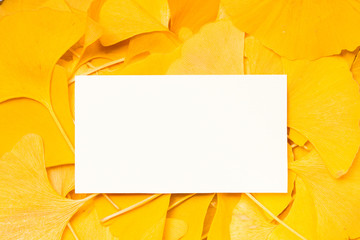 Blank paper on ginkgo leaves background