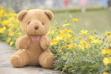 Teddy bear on a flower background blurred